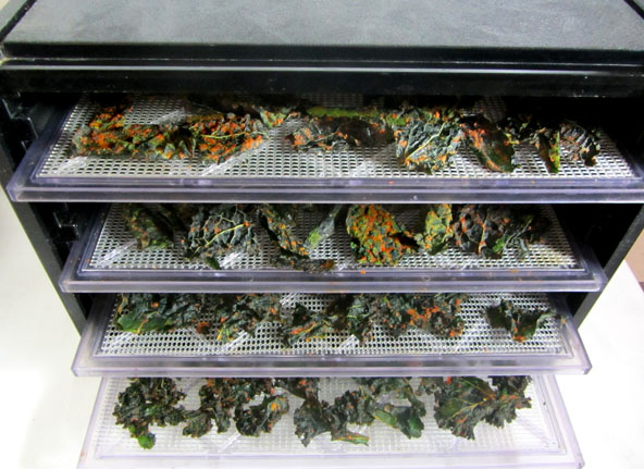 Kale Chips with Red bell peppers