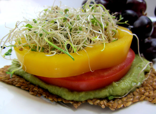 Flax Cracker Sandwich Image